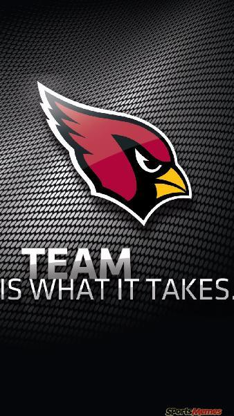 Arizona Cardinals 2016-2017 Review